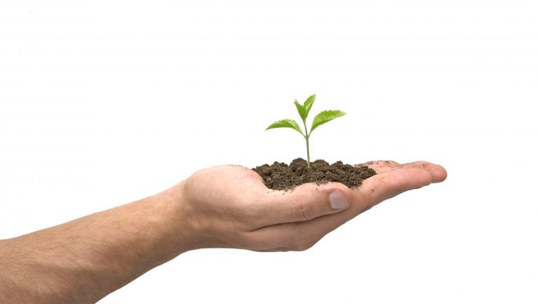 No Brasil, devemos estar orientados para CSB em vez de CSR