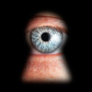 O labirinto global da segurança da informação: Snowden herói. E agora qual a saída?