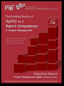 Desenvolvendo Agilidade como uma  Competência do Time de Projetos