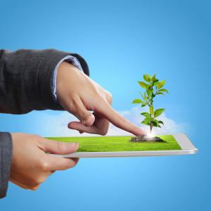TI sustentável para pequenas e médias empresas