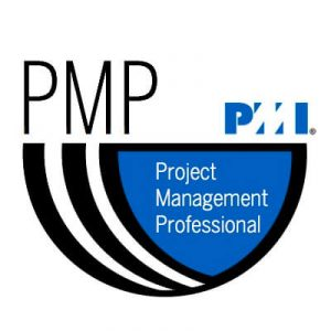Figura - Project Management Professional